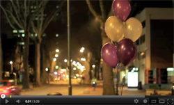 bam-video2